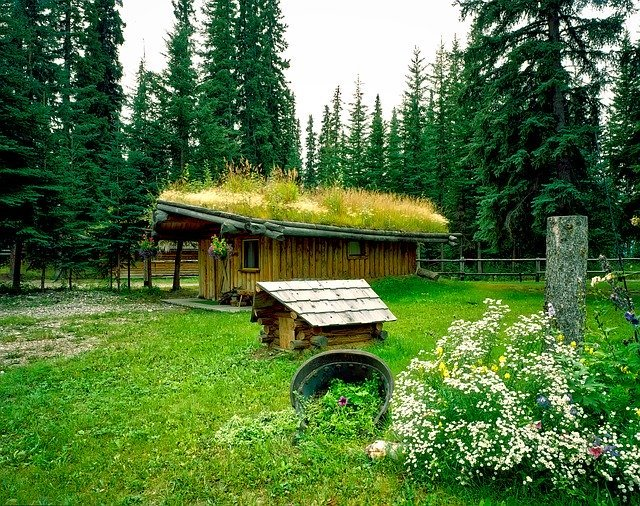 Domček v prírode obložený drevom a zeleňou na streche.jpg